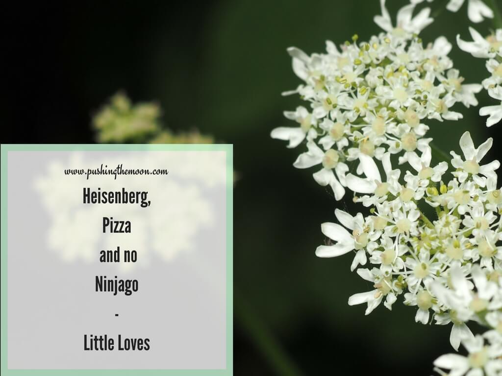 Heisenberg, Pizza and no Ninjago – Little Loves