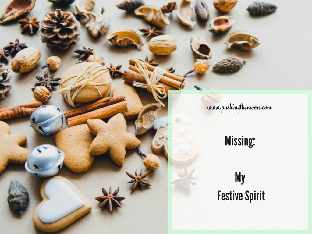 Missing: My Festive Spirit