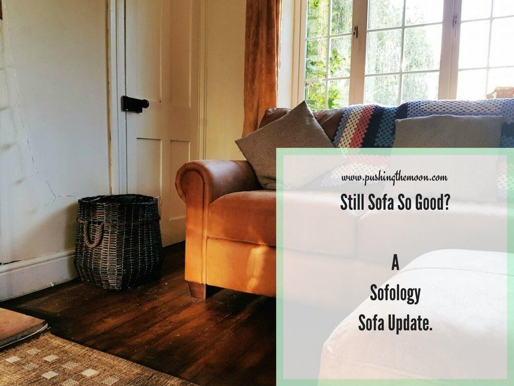 Still Sofa So Good? A Sofology Sofa Update.